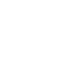 lorry special icon1